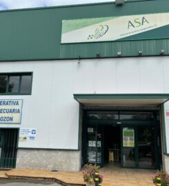 ASA Luanco (Gozón)