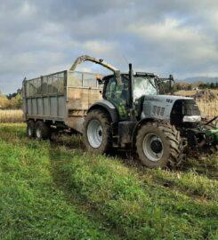 Servicios agrícolas Jesús